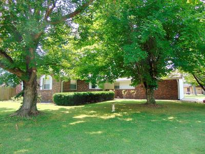Carterville Single Family Home For Sale: 519 N Division Street