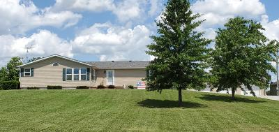 Jackson County, Williamson County Single Family Home For Sale: 267 Lacy Road