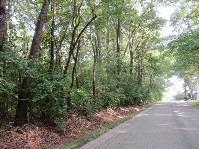 Benton Residential Lots & Land Active Contingent: Minier Road