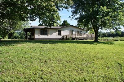 Massac County Single Family Home For Sale: 7021 Walnut Ridge Road