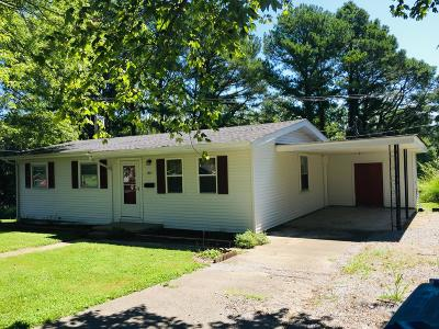 Hamilton County Single Family Home For Sale: 905 Circle Drive