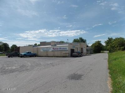 Williamson County Commercial For Sale: 315 S Granite Street