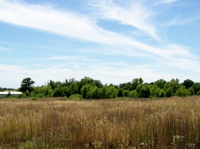 Williamson County Residential Lots & Land For Sale: 1408 Longstreet Road