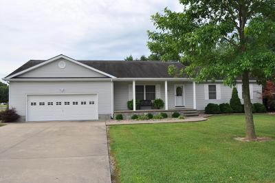 Hamilton County Single Family Home For Sale: 703 Briarwood Drive