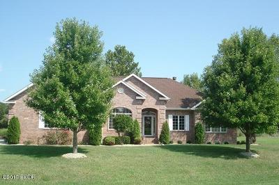 Carterville Single Family Home For Sale: 706 Jonathan Lane