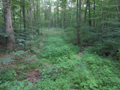 Johnson County Residential Lots & Land For Sale: George Bluff Loop