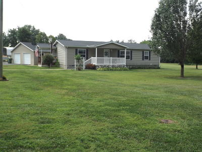 Jackson County, Williamson County Single Family Home For Sale: 603 W 17th Street
