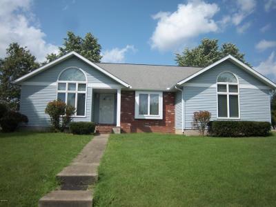 West Frankfort Single Family Home For Sale: 1301 E Clark Street