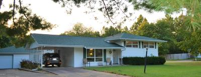Carbondale Single Family Home For Sale: 302 S Tower Road