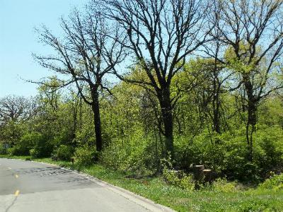 Morris Residential Lots & Land For Sale: Lot #1 Thomas Drive