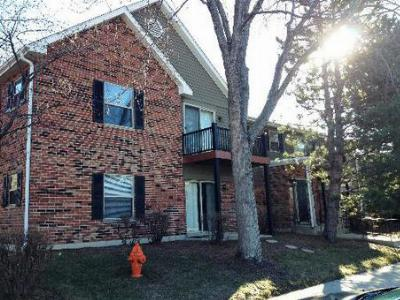 Naperville IL Rental For Rent: $925