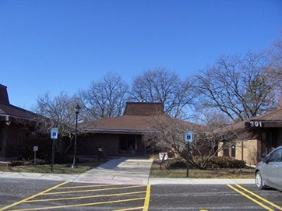 Carol Stream Commercial For Sale: 393 South Schmale Road
