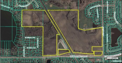 Residential Lots & Land For Sale: 21238 West Washington Street