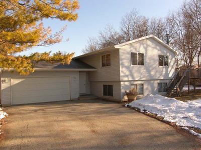 McHenry Single Family Home For Sale: 28903 South Drive