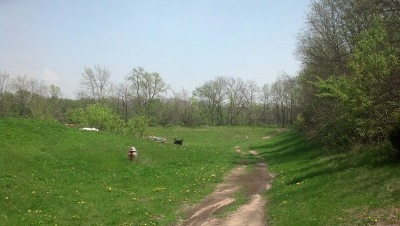 Ogle County Residential Lots & Land For Sale: 000 East Ashelford Drive