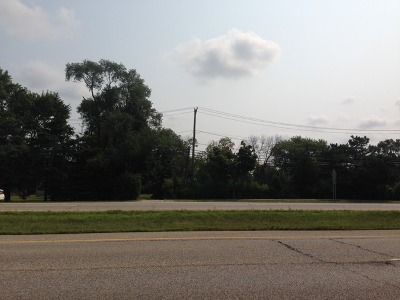 Lake Zurich Residential Lots & Land For Sale: 24191 North Us Highway 12