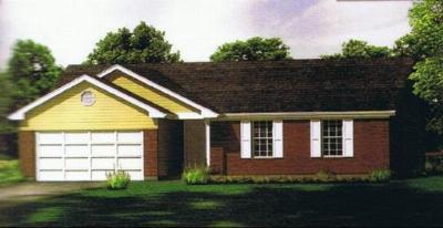 Coal City Single Family Home For Sale: 985 Foxgrove Drive