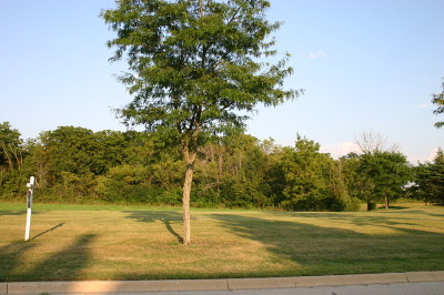 St. Charles IL Residential Lots & Land For Sale: $249,900