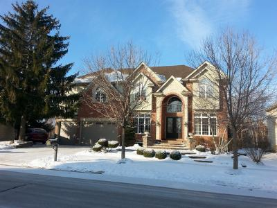 Naperville Single Family Home For Sale: 1040 Alder Lane