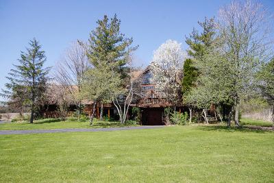 Homer Glen Single Family Home For Sale: 15308 West 159th Street