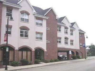 Clarendon Hills Condo/Townhouse Contingent: 245 Burlington Avenue #207
