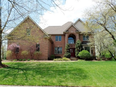 Carpentersville Single Family Home For Sale: 3288 Oak Knoll Road