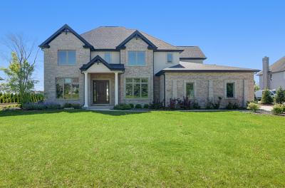 Burr Ridge Single Family Home Contingent: 9227 South Garfield Avenue