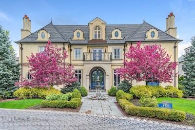 Hinsdale Single Family Home For Sale: 735 South Park Avenue