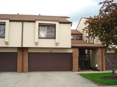 Hoffman Estates Condo/Townhouse For Sale: 993 Spring Mill Drive