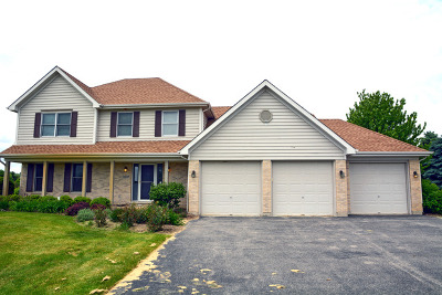 Huntley Single Family Home Contingent: 11807 Heron Drive