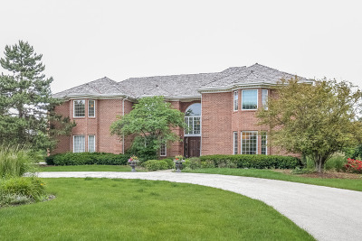 Oak Brook Single Family Home For Sale: 802 Deer Trail Lane