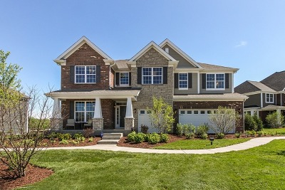 Naperville Single Family Home Contingent: 1227 Declan Lot # 7 Court