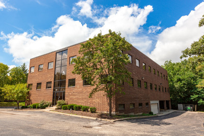 Du Page County Commercial For Sale: 127 Lake Street