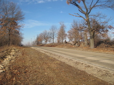 Braidwood Residential Lots & Land For Sale: Lot A Smiley Road