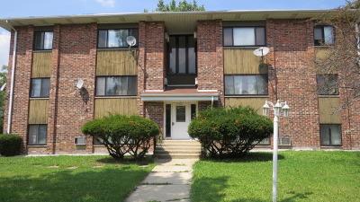 Glen Ellyn Multi Family Home For Sale: 1160 Surrey Drive