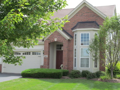 Oswego Single Family Home For Sale: 823 Colchester Drive