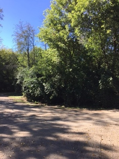 Algonquin Residential Lots & Land For Sale: 10401 Kenilworth Avenue