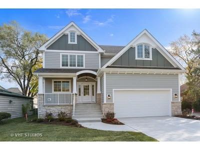 La Grange Single Family Home For Sale: 629 8th Avenue