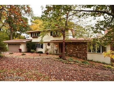 Palos Park Single Family Home For Sale: 11649 Walnut Ridge Drive