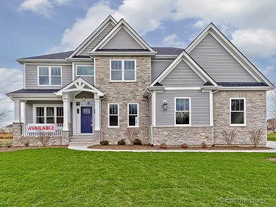 Plainfield Single Family Home For Sale: 15813 Brookshore Drive