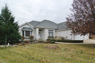 Homer Glen Single Family Home For Sale: 16045 Ridgewood Drive