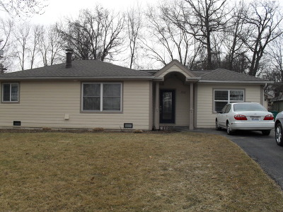 Lake Zurich Heights Single Family Home For Sale: 1051 Betty Drive