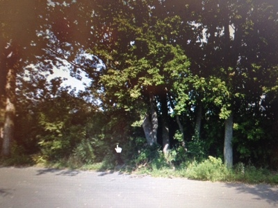 Lake In The Hills Residential Lots & Land For Sale: Lot 1 Plum Street