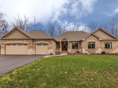 Lake Villa, Lindenhurst Single Family Home For Sale: 39203 North Gelden Lane