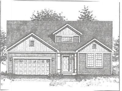 Johnsburg Single Family Home For Sale: 4216 Jay Street