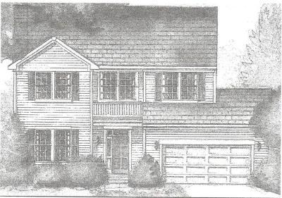 Johnsburg Single Family Home For Sale: 4102 Jay Street