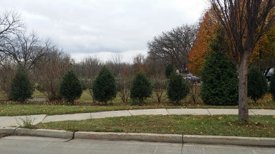 Elgin Residential Lots & Land For Sale: 711 East Chicago Street