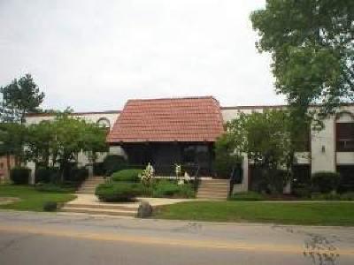 Du Page County Commercial For Sale: 96 West Moreland Avenue