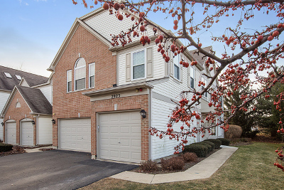 Condo/Townhouse Sold: 2923 Stonewater Drive #28