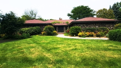 Antioch Single Family Home For Sale: 39596 North Wittenburg Road